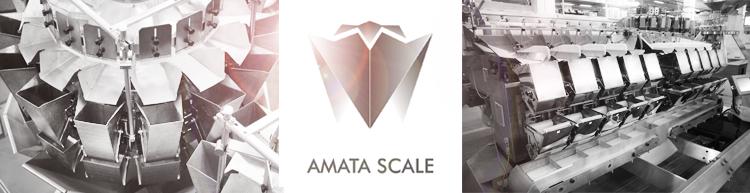 January 1, 2015 AMATA SCALE started
