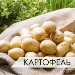 фасовка картофеля