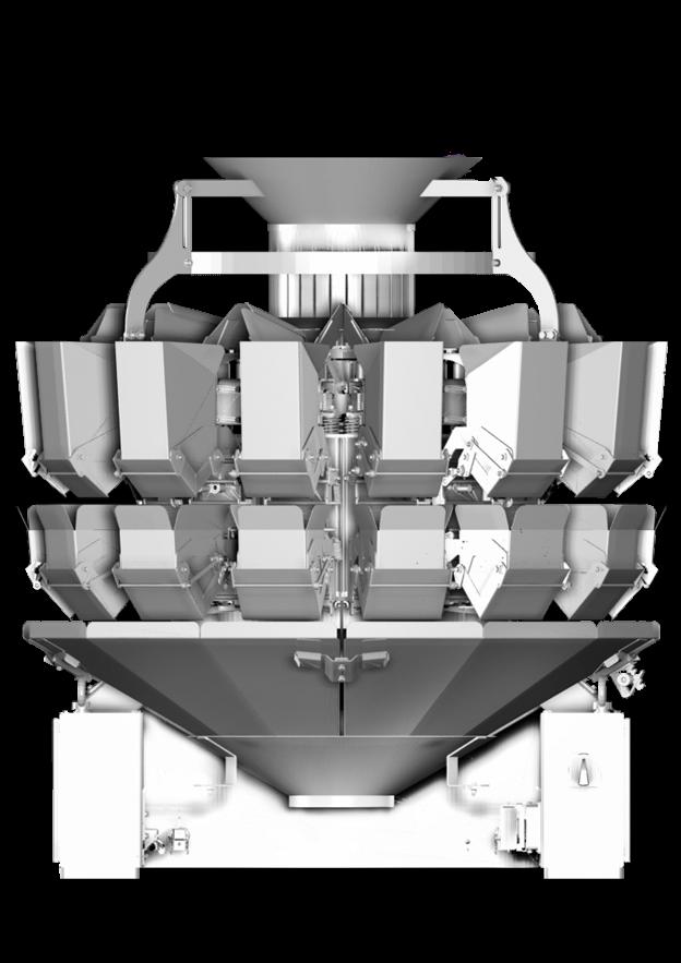 мультиголовочный комбинационный весовой дозатор амата скейл пологие скаты 14 карманов